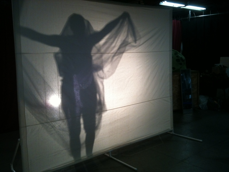 shadow puppet woman