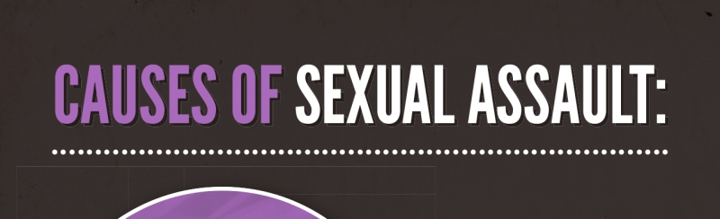 Causes of Sexual Assault banner